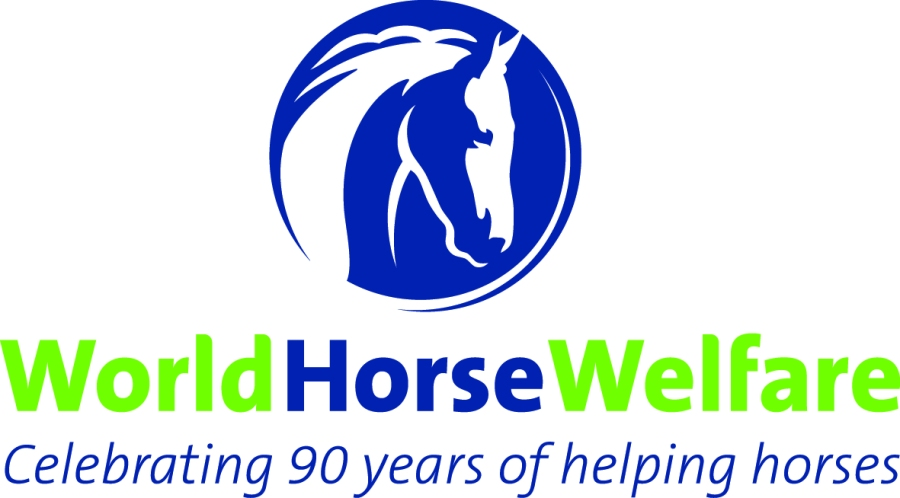 90th-slogan-whw-blue-and-green-logo-on-clear-background
